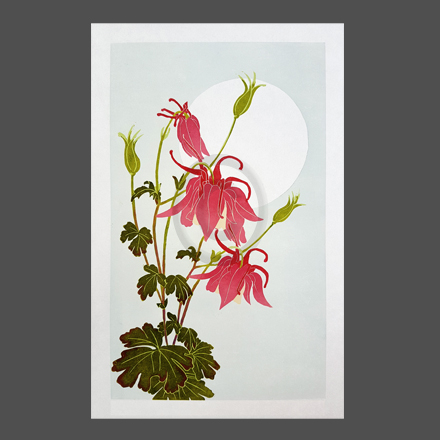 kate steele :: aqualegia spring magic rose and ivory :: linoprint